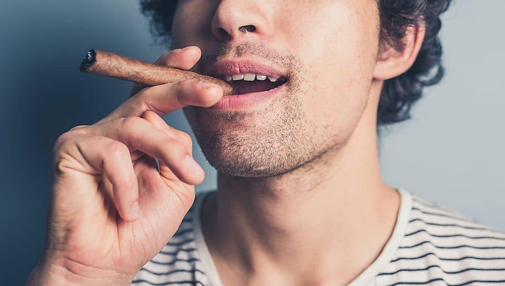 beginner cigars