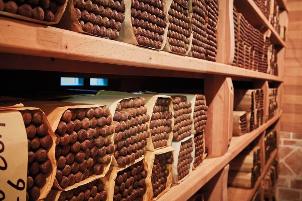 creating cigars